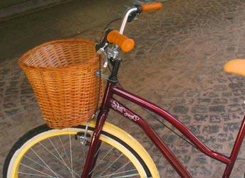 bici-canasto