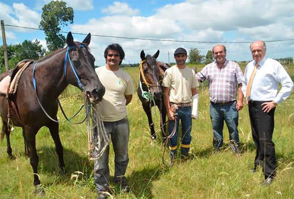 caballos-sueltos-jefe-comunal